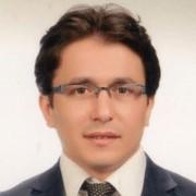 Abidin Kaya, Ph.D.*
